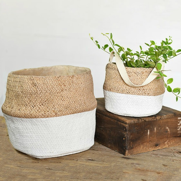 baskets for house plants for staging